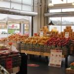 Enershield MCS - Kin's - Market Crossing